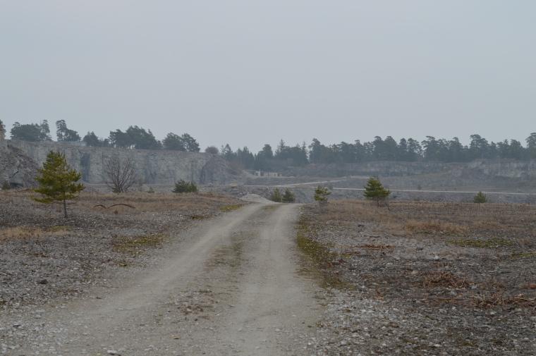 Gotland januari 2017 007.JPG