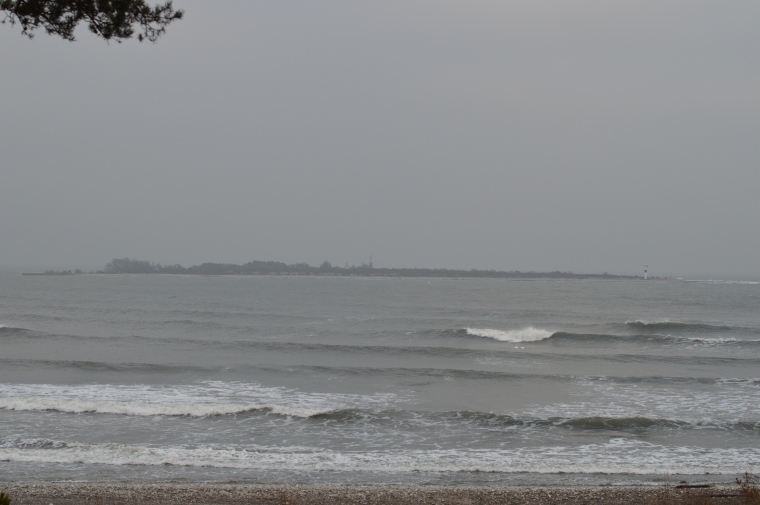 Gotland januari 2017 045.JPG
